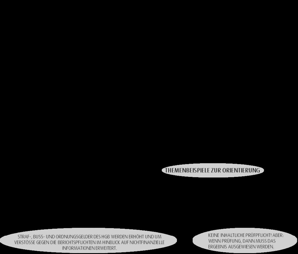 eu-csr-richtlinie
